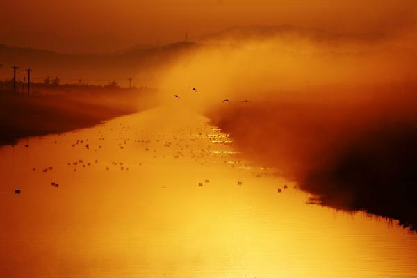朝 霧 -河北潟干拓地ー