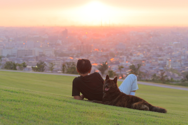 大乗寺山公園ー夕景ー